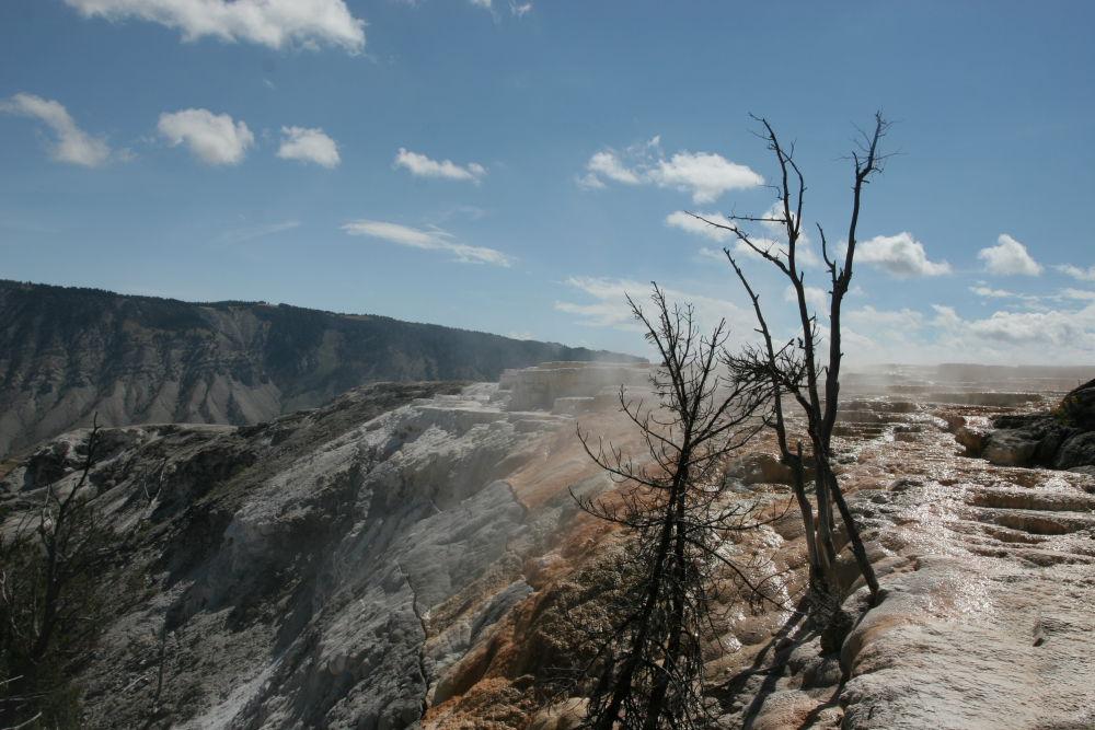 Yellowstone 05 (313).JPG