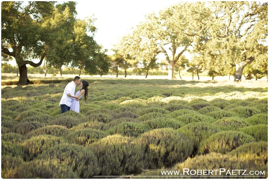 Solvang, Gaviota, Engagement, State, Beach, Photography, Photographer, Lavender, Fields