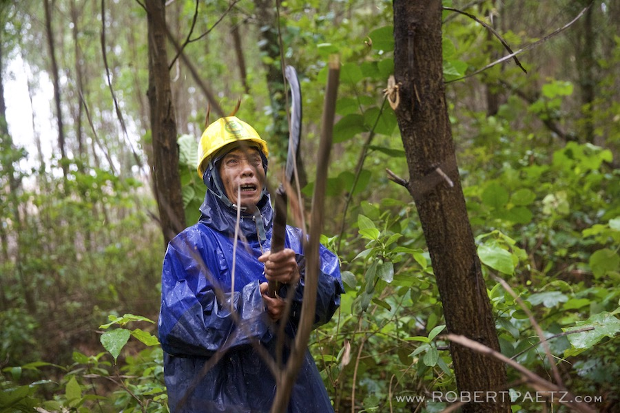 Vietnam, Dong, Ha, Khe, Sanh, Global, community, service, foundation, NGO, photographer, reforestation