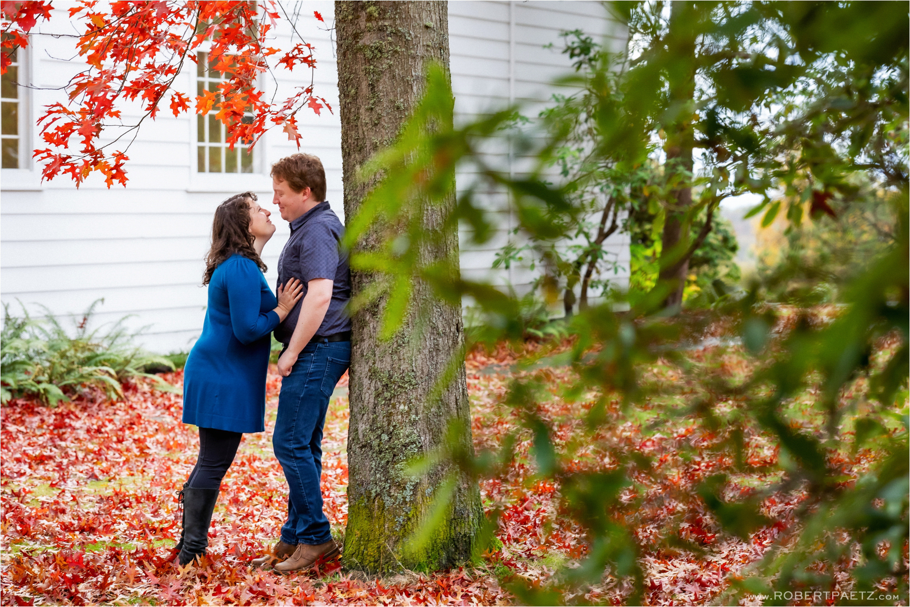 discovery, park, seattle, engagement, photography, photographer, paw, unique, fall, autumn